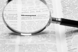 Mikromanagement
